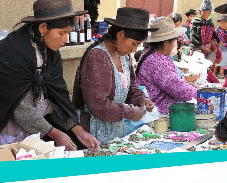 Vrouwen-op-de-markt-Peru-The-Hunger-Project-mb